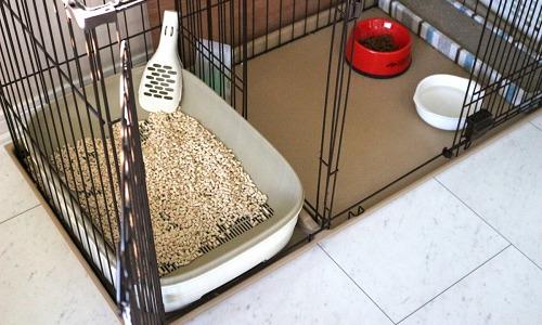ペットのトイレ