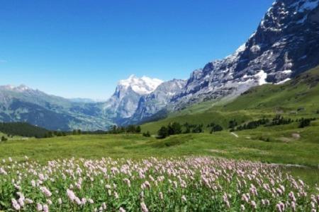 ヨーロッパの山々