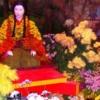 日本三大菊人形はどこで見れるの?発祥や歴史も解説します!