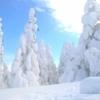 日本三大樹氷とはどこにあるの?各地の見どころや樹氷のでき方を解説!